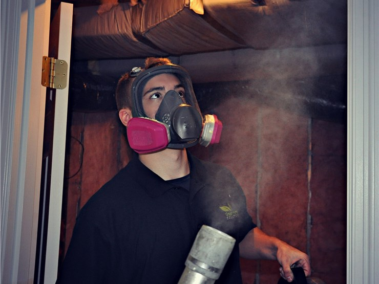 our staff doing mold removal services in stamford